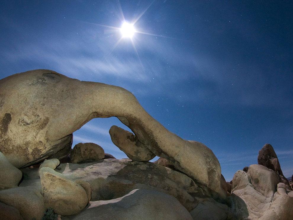 Восход Луны. Национальный Парк Дерева Джошуа, Калифорния