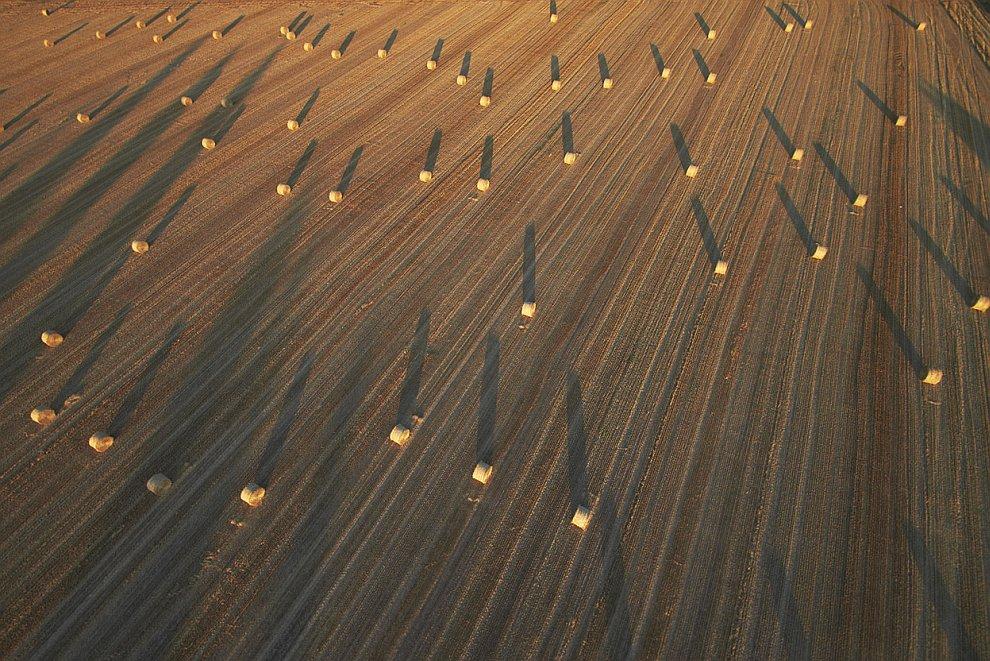 Тюки соломы в поле