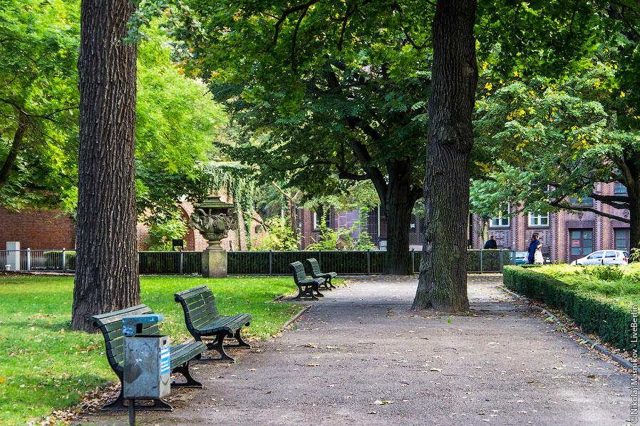 Парк в Берлине и его косолапые жители