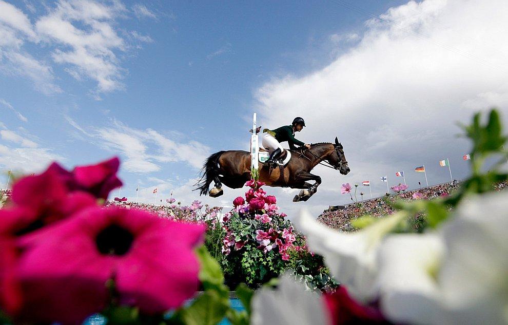 На фотографии соревнования по конному спорту