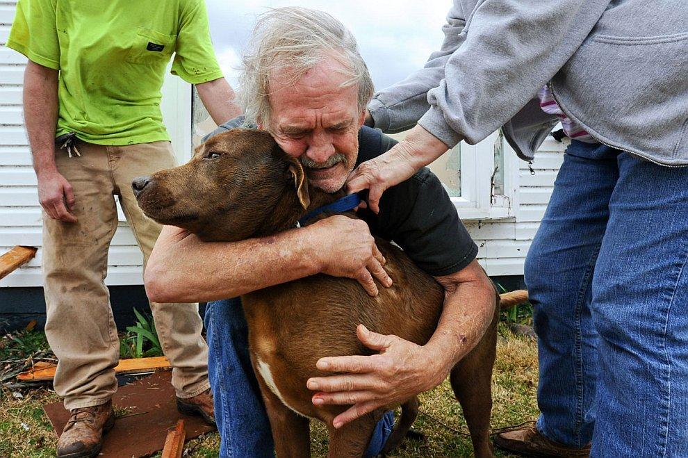 Хозяин разыскал после торнадо своего верного пса