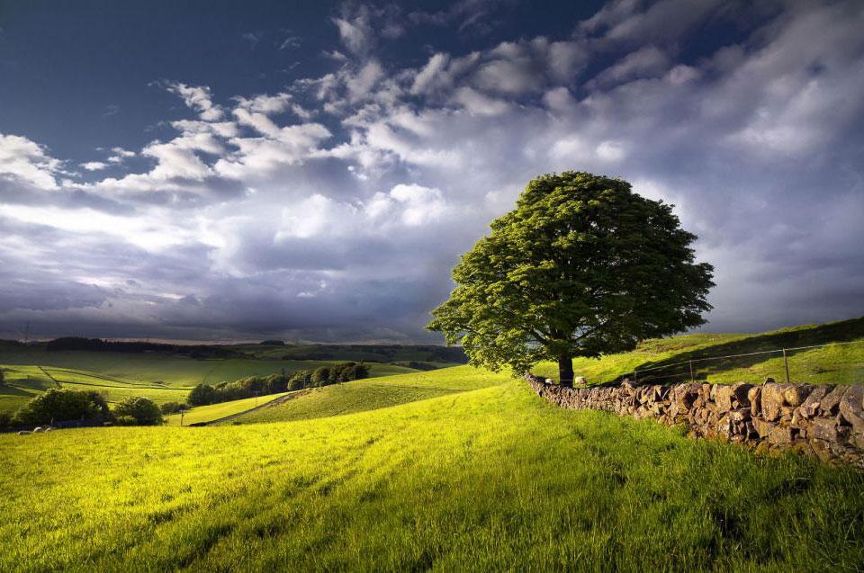 После дождя. Графство Кинроссшир в Шотландии