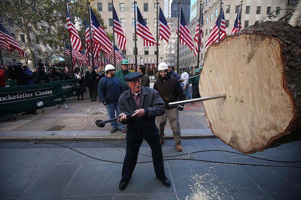 Установка могучего новогоднего дерева у Рокфеллер-центра в Нью-Йорке