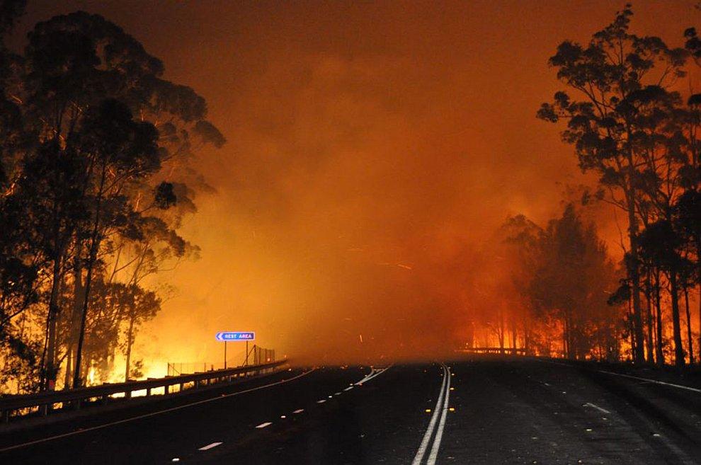 В эти дни пламя от пожаров уничтожило более сотни домов и фермерских хозяйств
