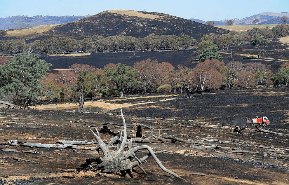 Выжженные области в Южном Уэльсе