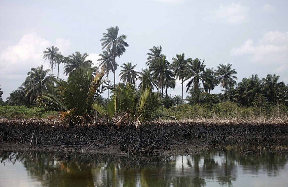 Природа в этих местах Нигерии выглядит удручающе