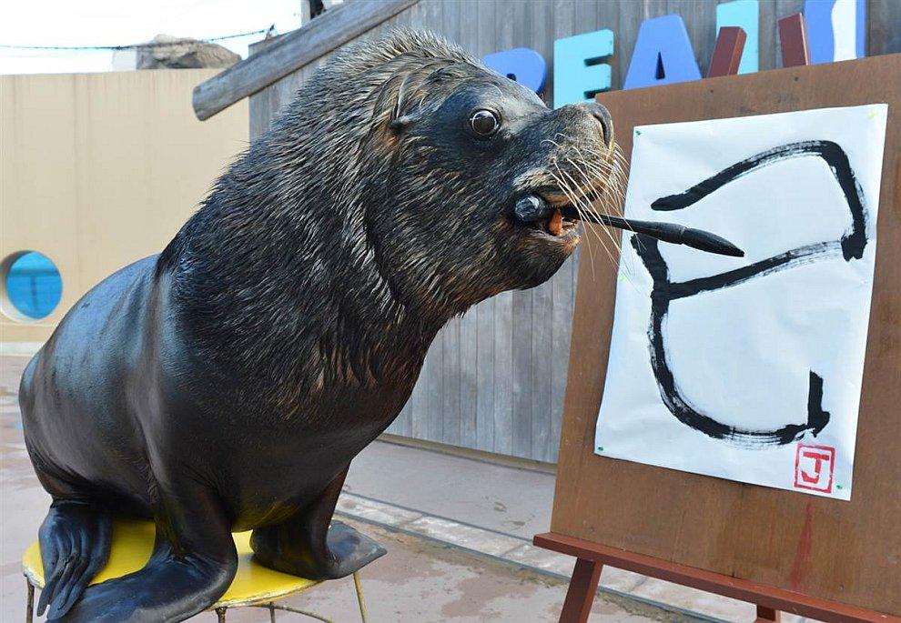 Морской лев выводит китайский иероглиф, который переводится как «Змей»