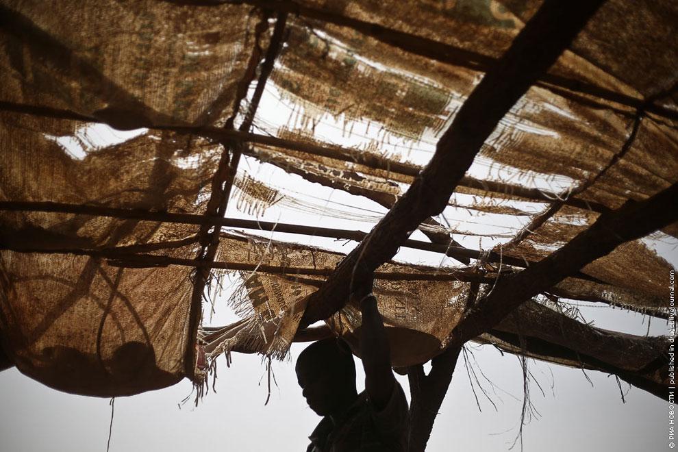 Золотая лихорадка по-африкански