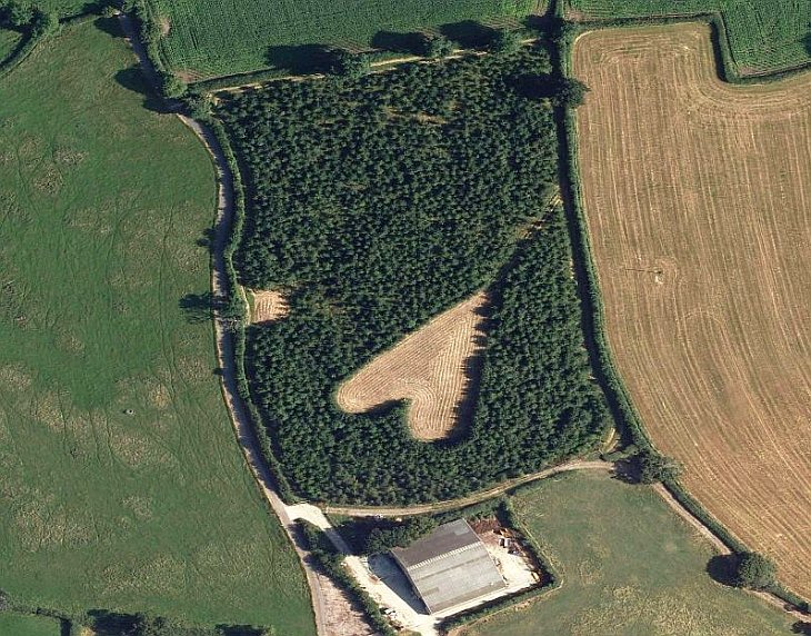 Вот такое поле вспахал фермер в Южном Глостершире, Великобритания в честь его покойной жены