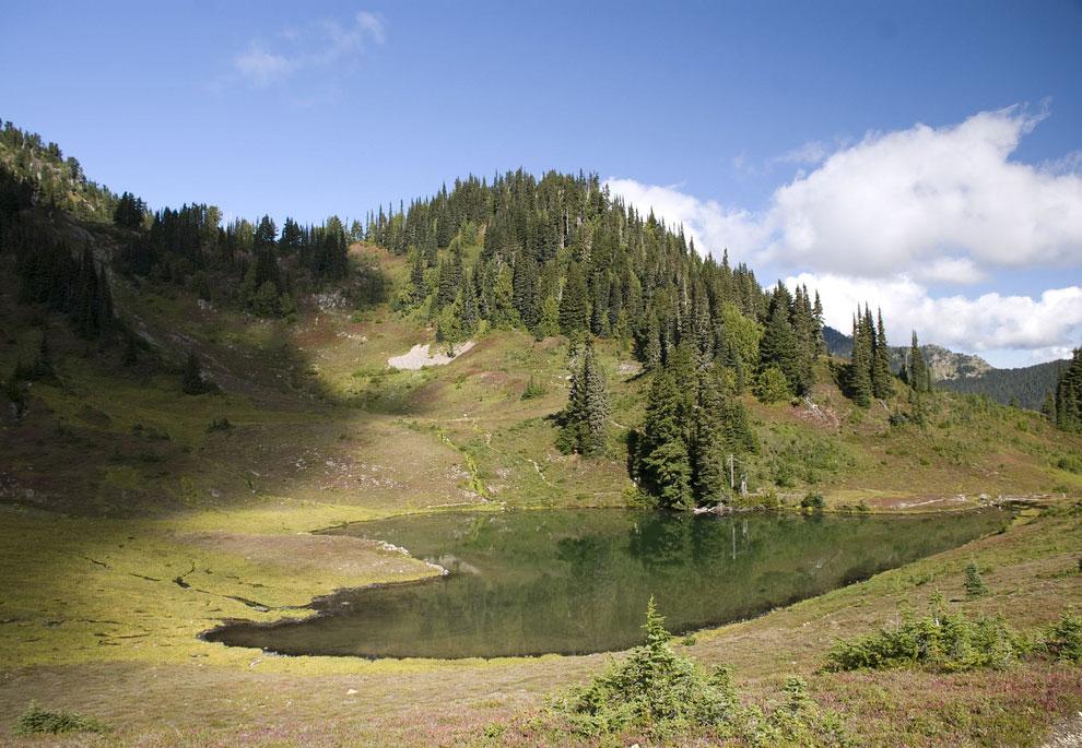 Озеро в Национальном олимпийском парке в Вашингтоне