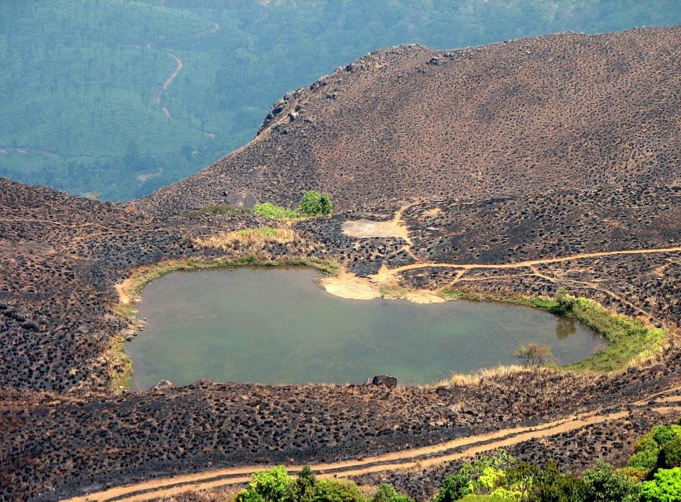 Озеро в годах. Ваянад, Керала Индия