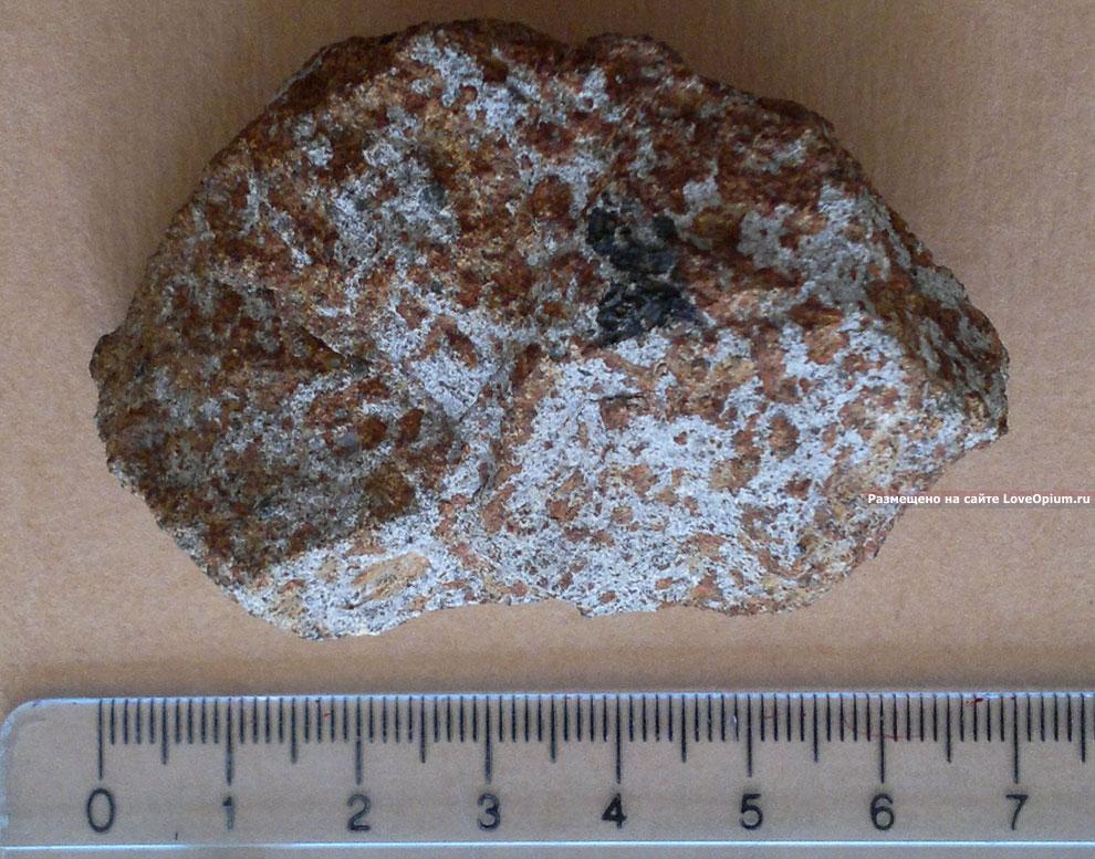 Метеорит Куня-Ургенч из Туркмении