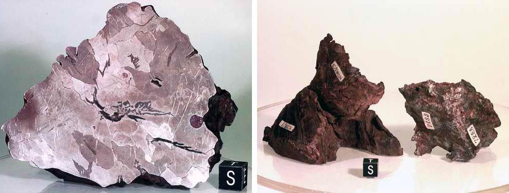 Метеорит Сихоте-Алиня, Дальний Восток