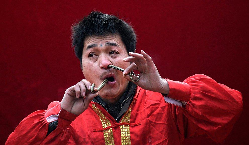 Китайский Новый год 2013 — год Черной Водяной Змеи