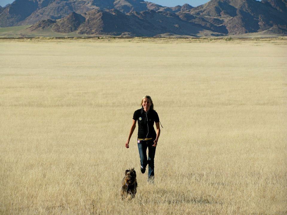 Пес-путешественник