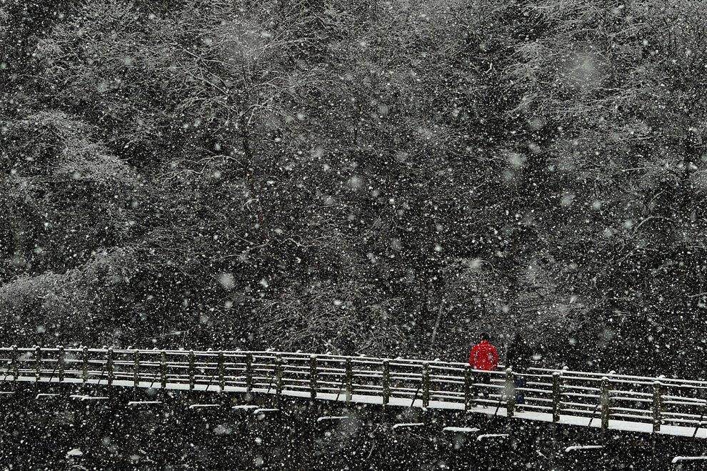 Снегопад в графстве Северный Йоркшир, Англия