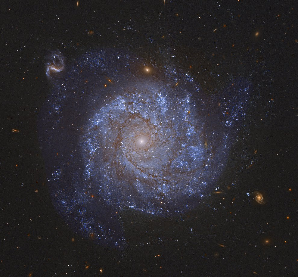 Спиральная галактика NGC 1309