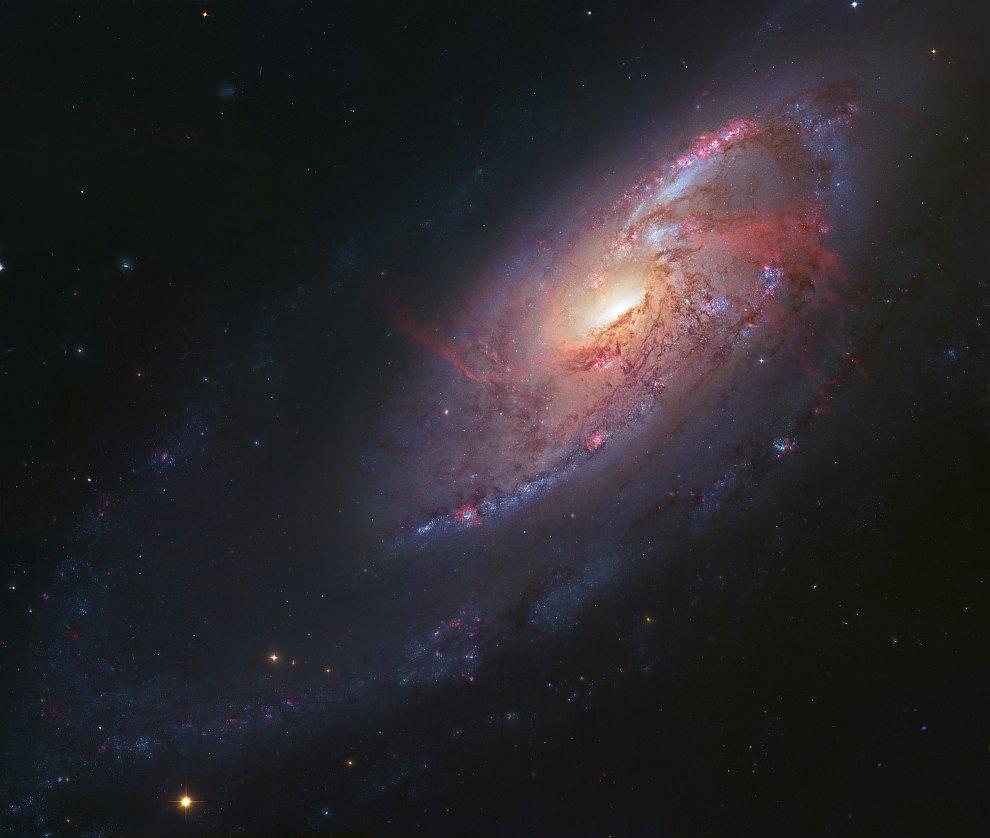 Галактика M106 в в созвездии Гончие Псы