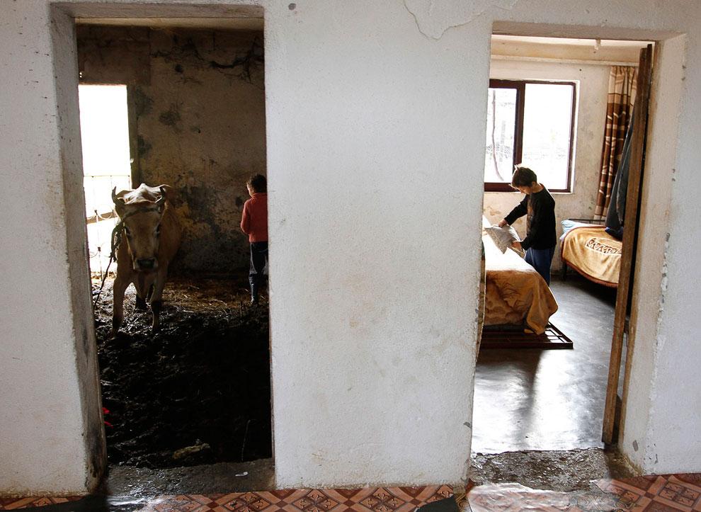 В этом доме к северу от албанской столицы Тираны все живут бок о бок