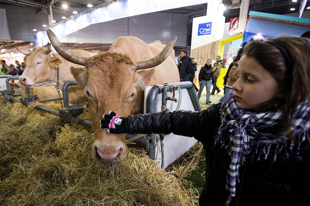 Международный сельскохозяйственный салон в Париже