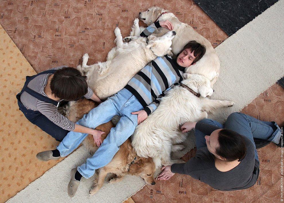 Канис-терапия: как собаки помогают больным детям