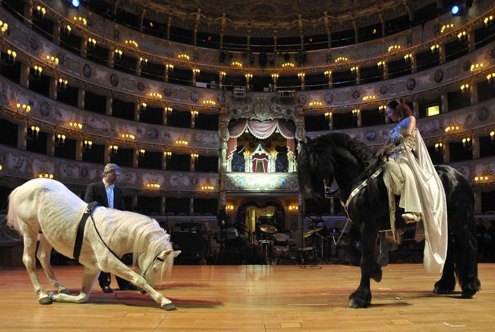 Оперный театр «Феникс» является одним из самых известных театров в Европе
