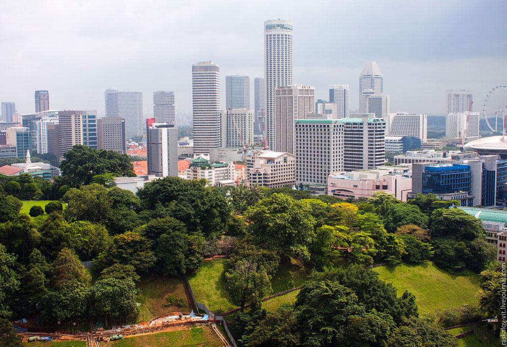 Несмотря на большую концентрацию небоскребов, город очень зеленый. Везде парки, деревья
