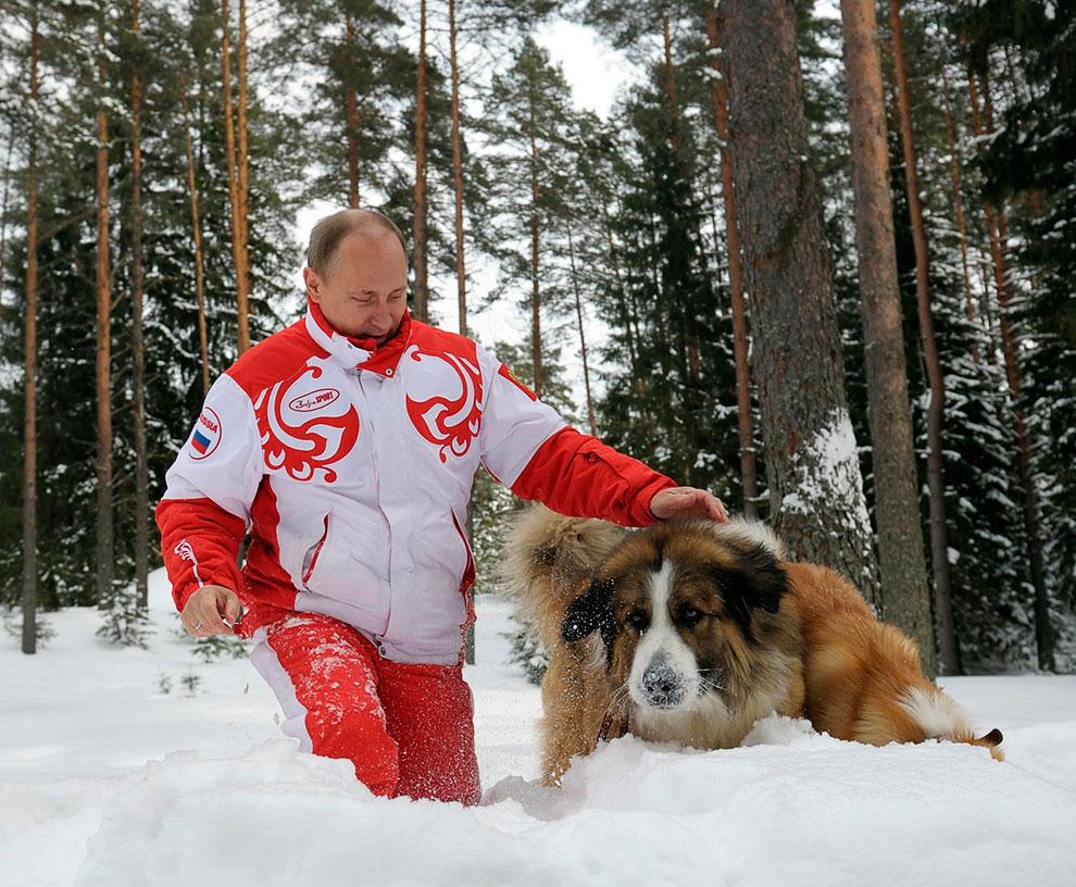 Владимир Путин и его собаки