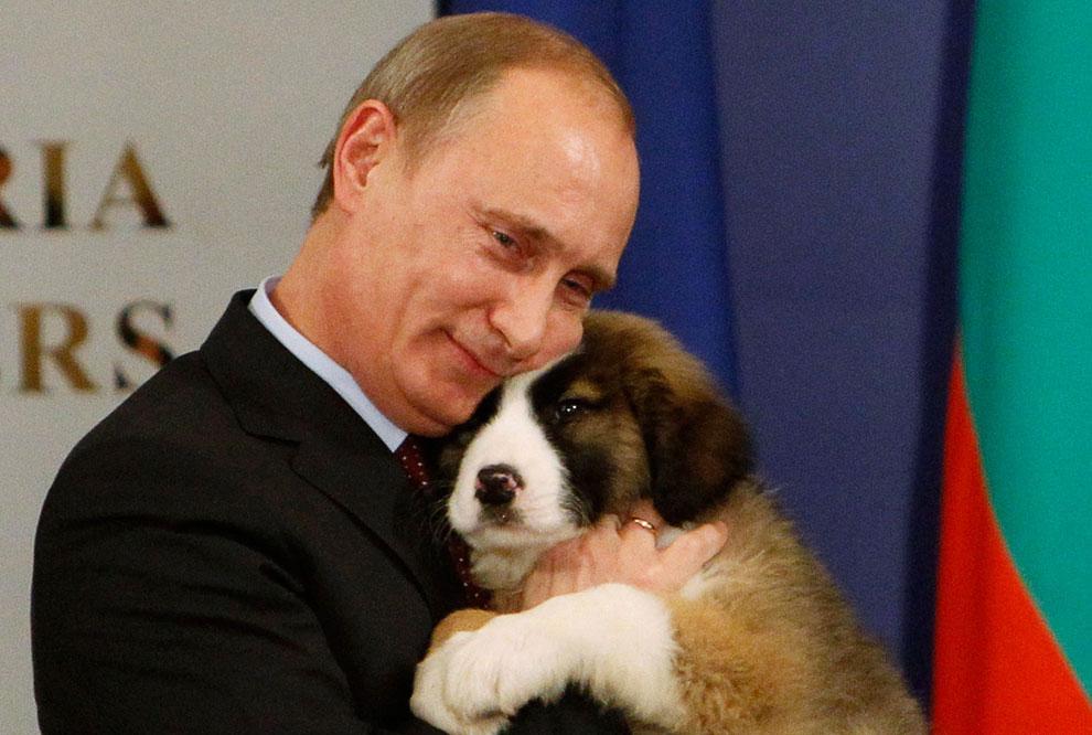 Собаки Путина: Баффи