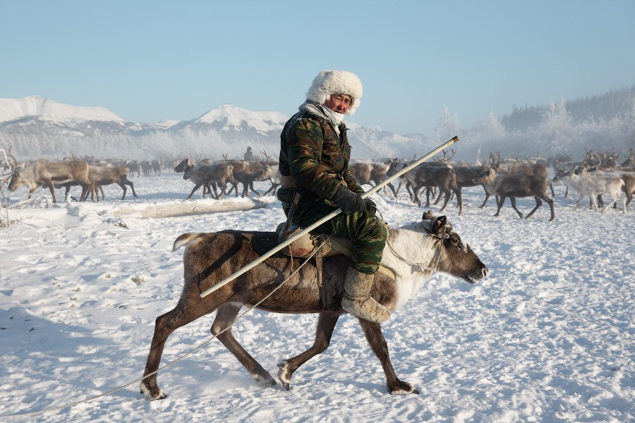 Оленеводы Якутии