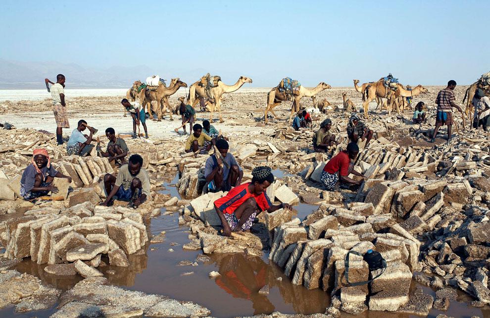 Люди собирают соляные блоки