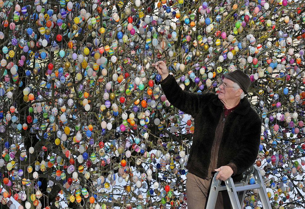 Вот уже 40 лет семья Крафт украшает пасхальными яйцами деревья в своем саду
