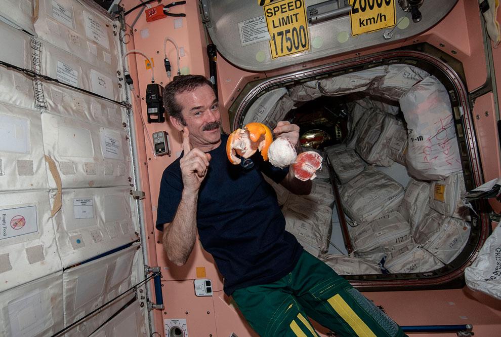 На МКС на борту первого частного космического грузовика Dragon SpaceX прибыли фрукты
