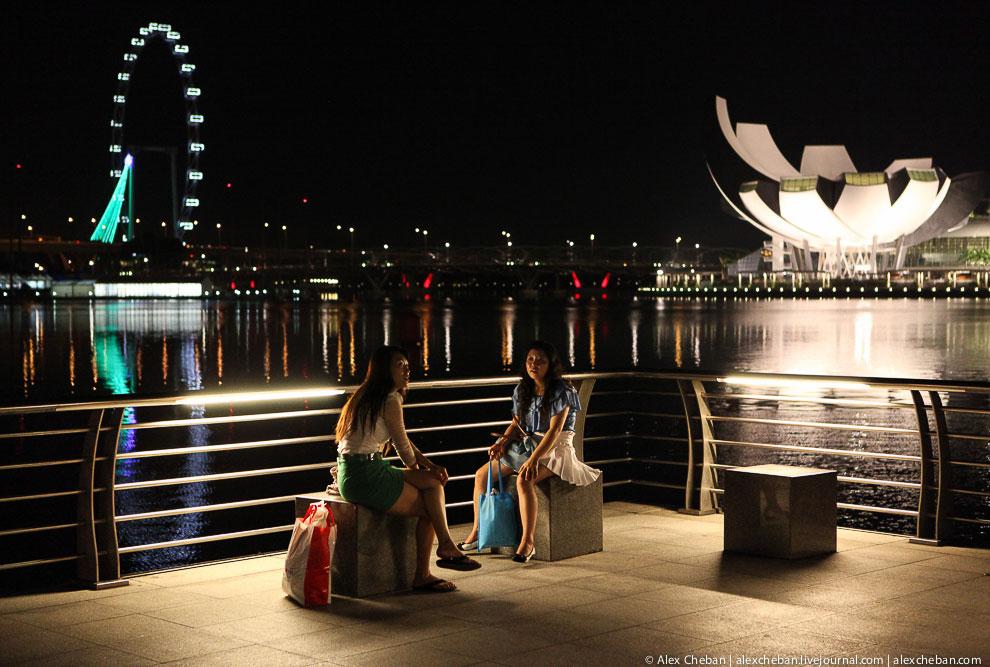 Вид на музей Art Science и сингапурское колесо обозрения Flyer
