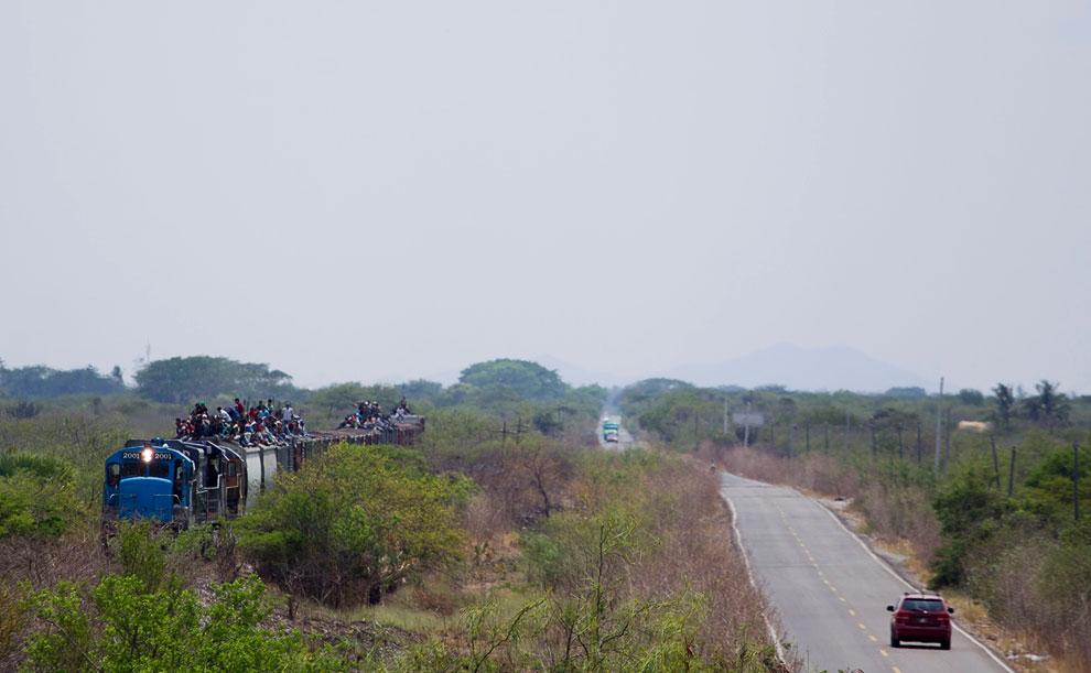 Мигранты едут на крыше поезда, направляясь к американо-мексиканской границе