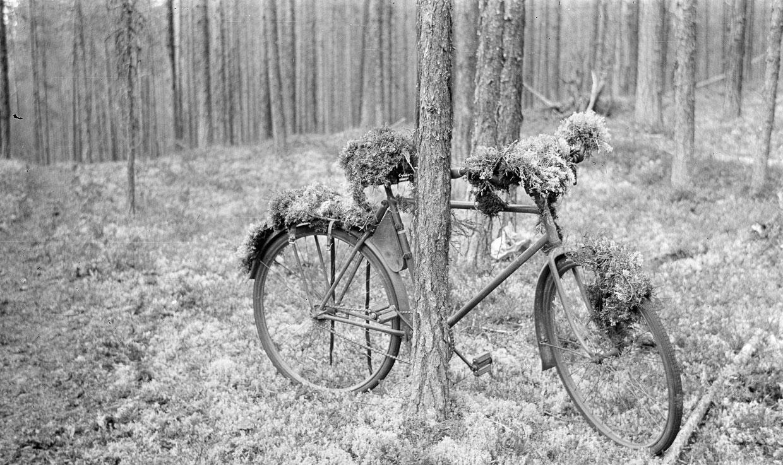 Замаскированный велосипед