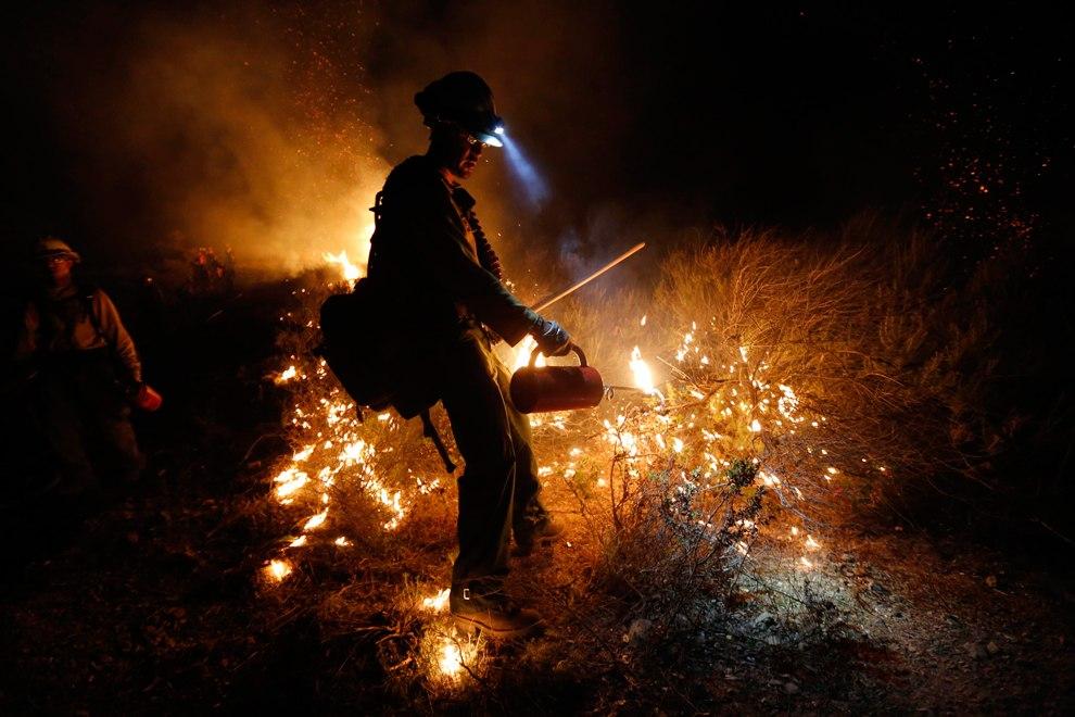 Со стихией боролись более 900 пожарных