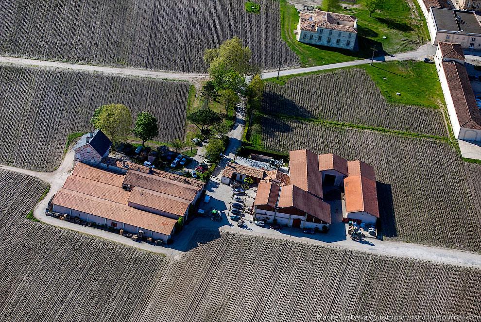 Город со всех сторон окружен виноградниками и замками, именуемыми Шато. Здесь производится самое известное в мире сухое вино Бордо