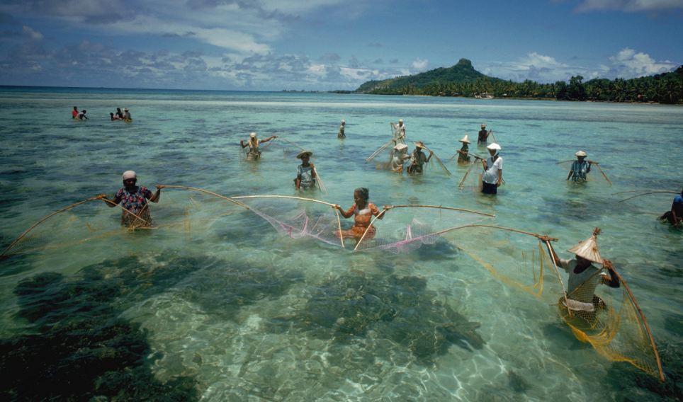 А на поверхности Тихого океана жизнь продолжается