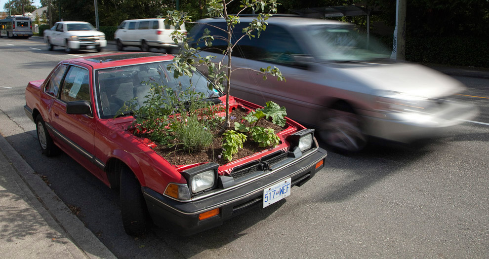 Машина-дерево, Ванкувер
