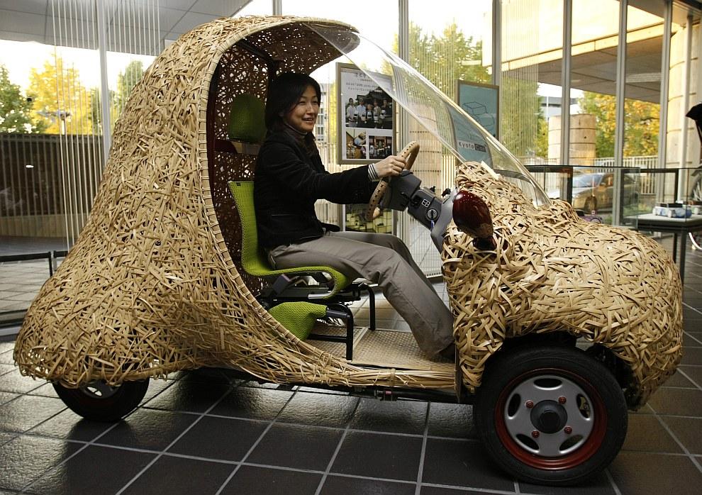 Электромобиль из бамбука