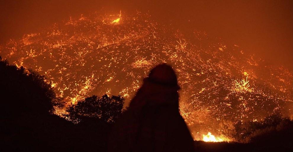 На данный момент территория пожаров в Калифорнии составляет почти 8 000 гектаров
