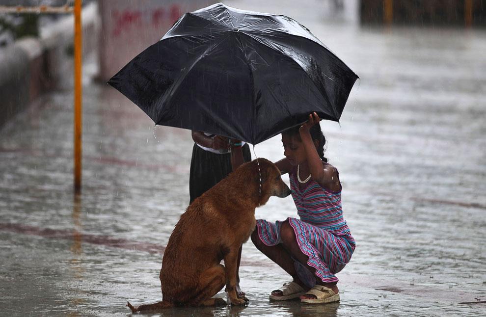 Муссонные дожди в Мумбаи
