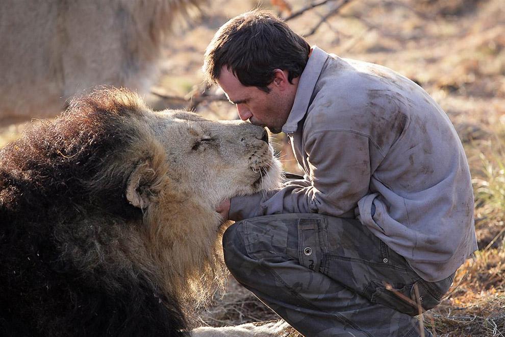 Заклинатель львов
