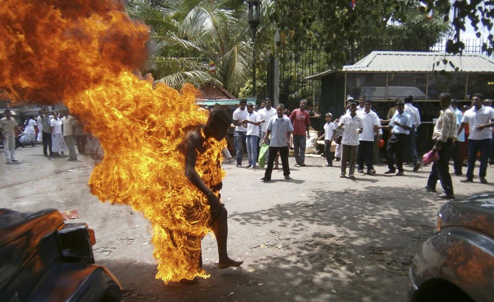 В Шри-Ланке буддистский монах поджег себя в знак протеста против забоя скота, а также протестуя против того, что некоторые буддисты переходят в другие веры