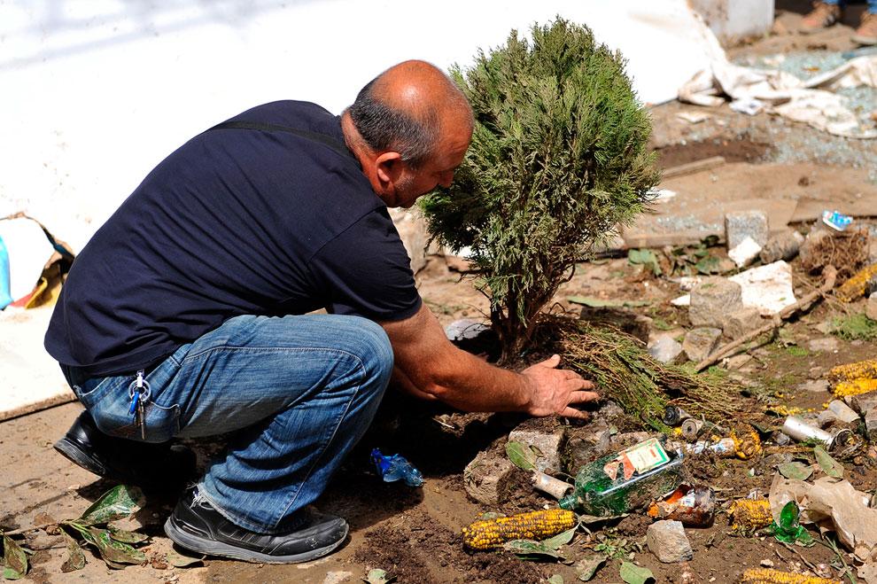 Один из протестующих против вырубки парка сажает дерево на улице Стамбула