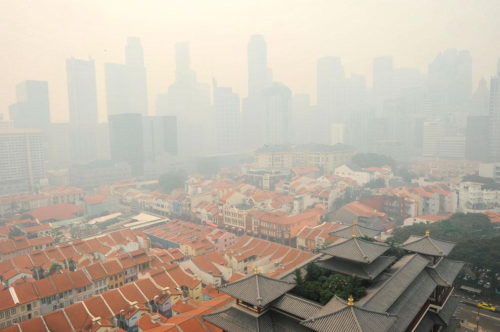 Дым от лесных пожаров в Индонезии достиг Сингапура