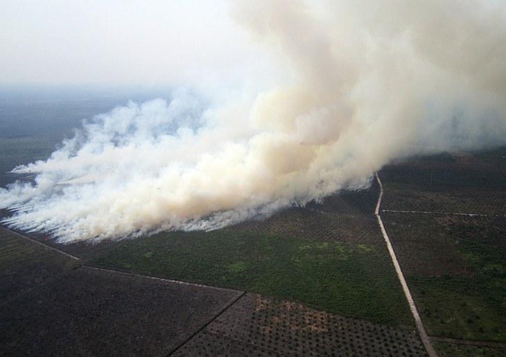 Эта фотография сделана с воздуха 17 мая 2013. На ней видны пожары на сельскохозяйственных плантациях на Суматре. Контролируемый поджог устроили местные фермеры