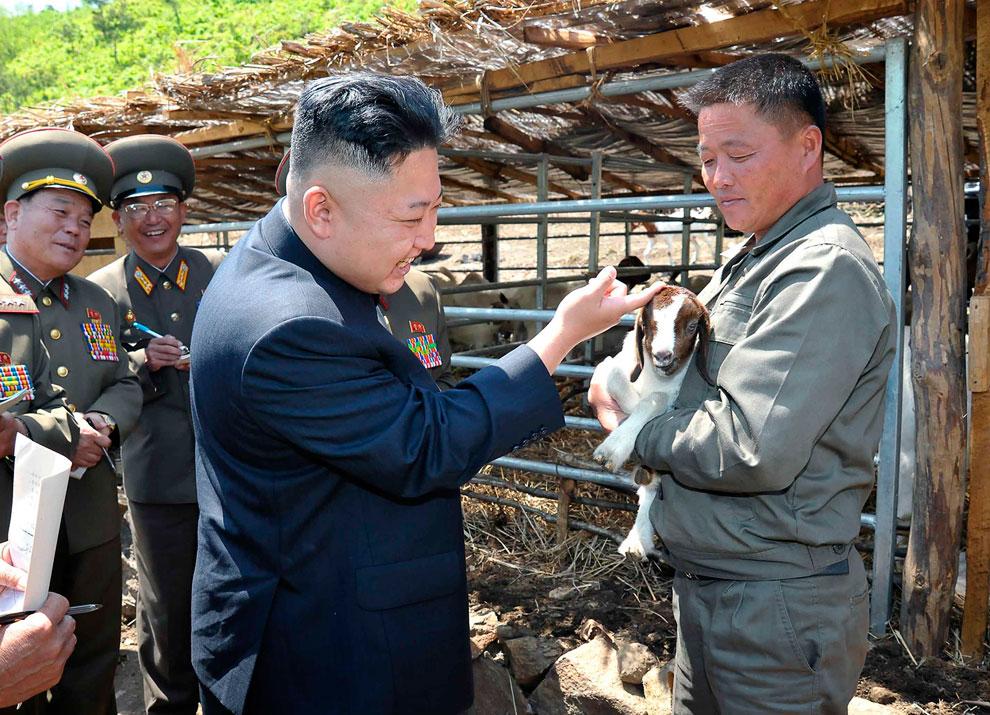 Северокорейский лидер Ким Чен Ын гладит козленка во время посещения строящегося селекционного центра в Северной Корее