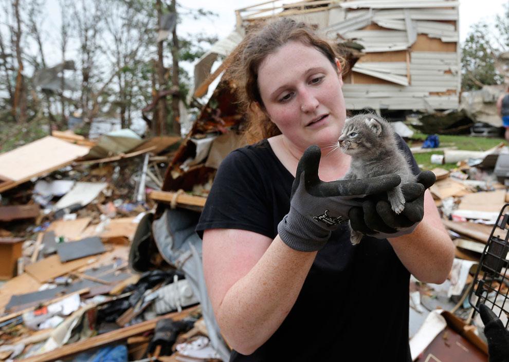 Спасатели нашли котенка под обломками дома, уничтоженного торнадо в штате Оклахома